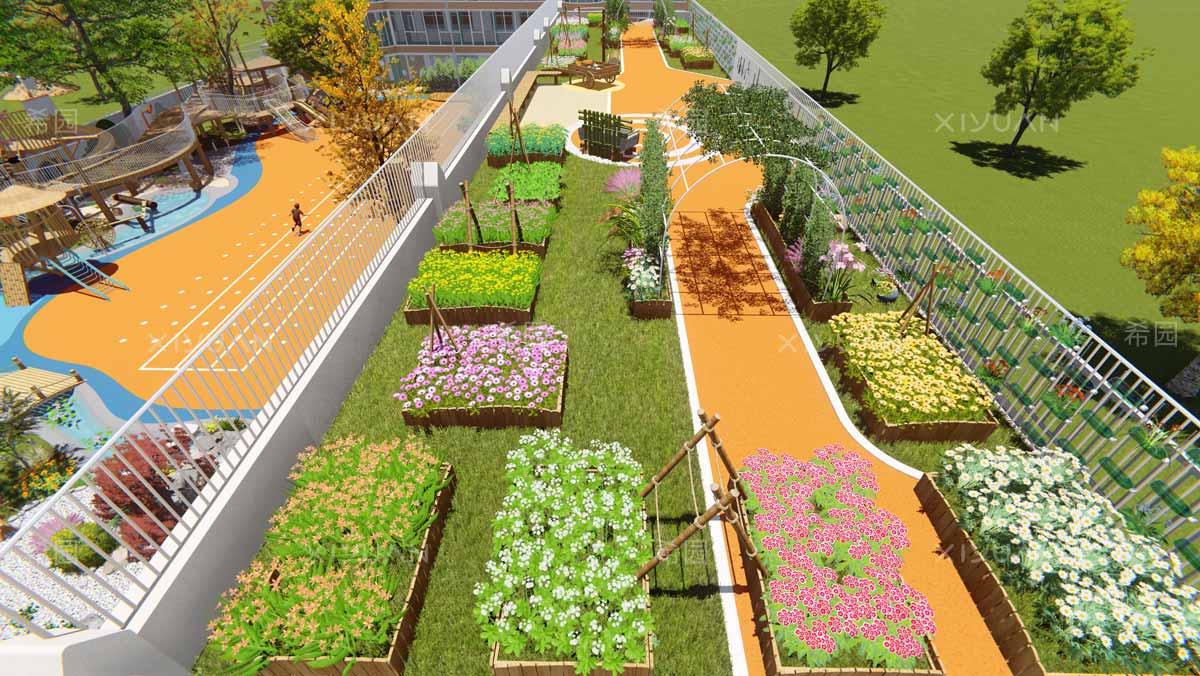 幼儿园种植区