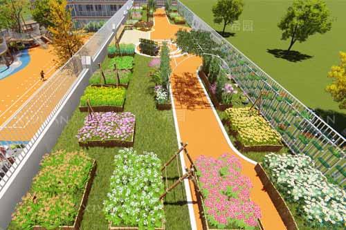 幼儿园自然种植养殖活动应该如何设计呢?